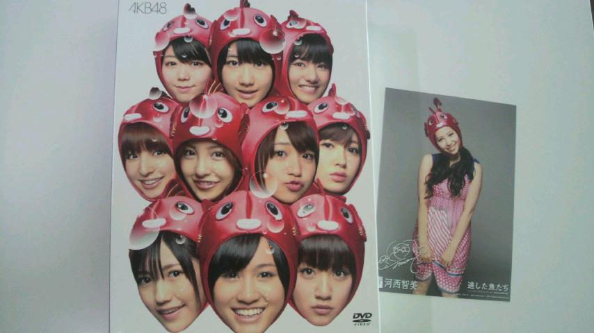購入DVD(AKB48)